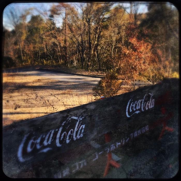 冬のキャンプ場の周りは枯れた森・・・