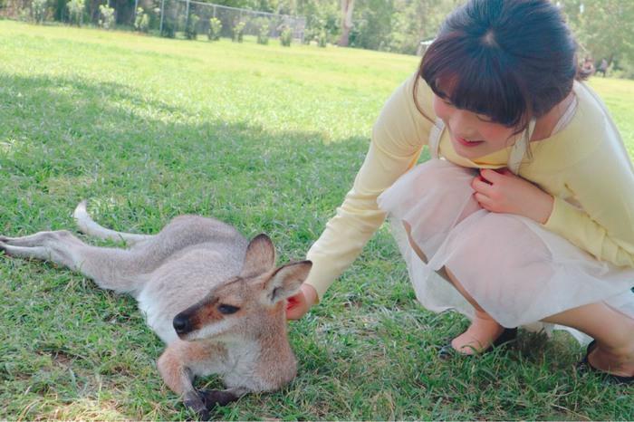 オーストラリアのカンガルーを手なづけている風景
