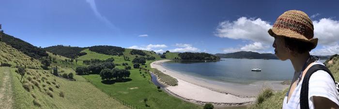 ニュージーランドの自然溢れる風景にはみどりと水色が共存。海の青さが緑に映えています。