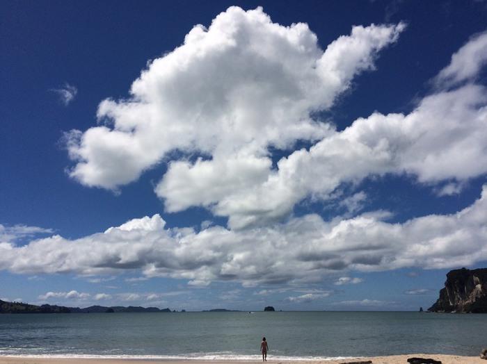 水平線が広くてどこまでも青い海。ニュージーランドって素敵だと思います。