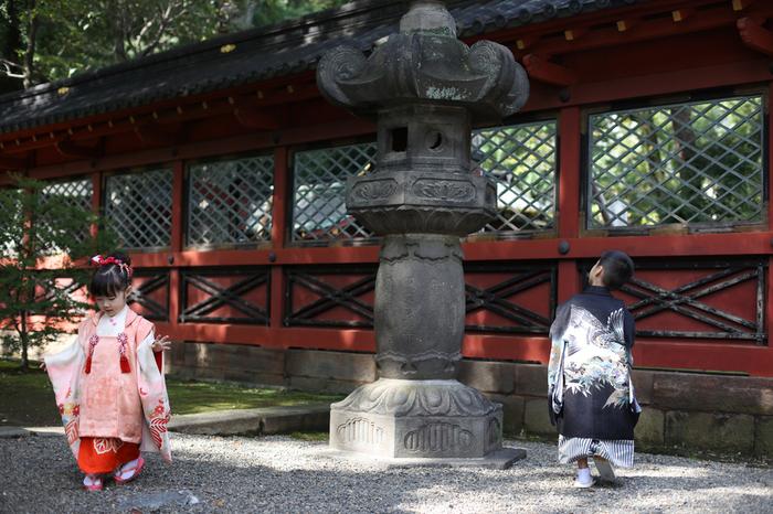 根津神社の境内で、光降り注ぐ緑をバックに、走り回る3歳と5歳の子供たちを、東京都文京区千駄木のフォトスタジオ、ケープルヴィル写真館のフォトグラファーが写真を撮る。