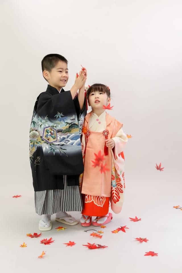 東京都文京区千駄木の写真館で、七五三撮影中のこどもたちが、落ちてくる紅葉を拾いながら楽しみながら写真撮影中。