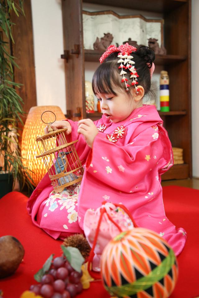 手まりや紅葉や果物を毛氈の上に並べて楽しみながら撮影をする3歳の女の子の七五三。千駄木の古民家一軒家スタジオで。