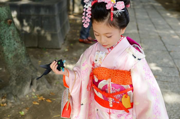 7歳の七五三撮影を出張撮影で諏訪神社に。台東区の撮影ならケープルヴィルがいいですね。